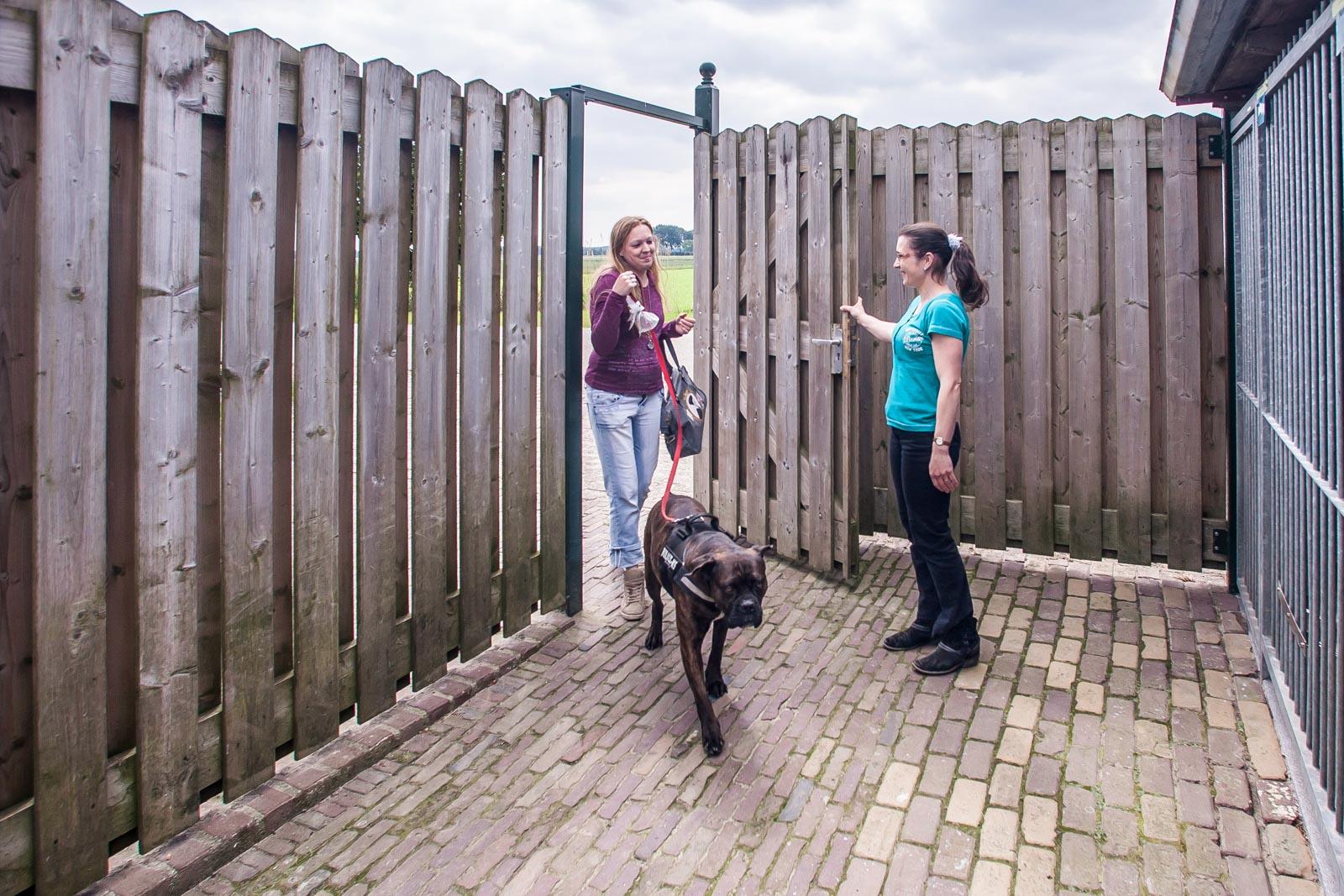 Esther van Nijnatten ontvangt een hond
